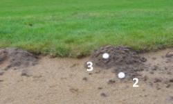 Muldvarpeskud – bunker