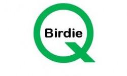 Birdie-Q  /  Uspillelig bold bag træ